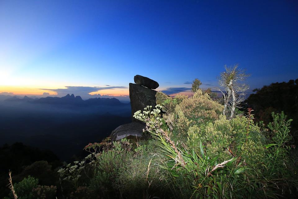 Nova Friburgo Espetacular: Jardins do cume do Caledônia